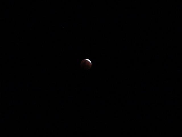 DSC00279 Eclipse de Luna20 Febrero 2008