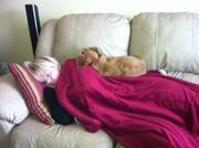 Bailey sleeping with mom