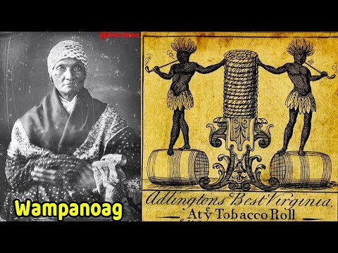 "Pt. 20 - From Indigenous American to  African American / First ""negro"" slaves (Indians) in 1526"