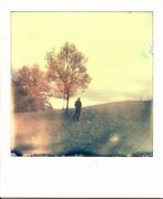 t'immaginavo d'autunno