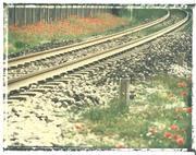 ...dove corrono i treni... 2