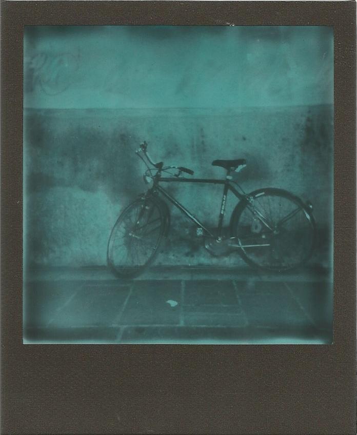 La mia città e le sue biciclette. Ahimè, anche i suoi ciclisti