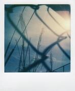 La libertà dietro una gabbia