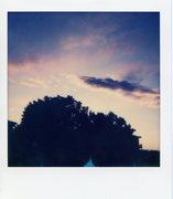 polaroid_print_005