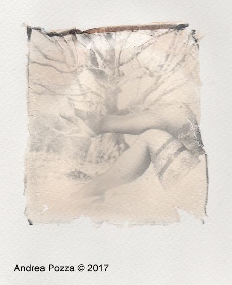 Monti Lessini 06