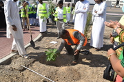 Planting the first tree
