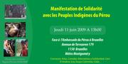 Manifestation de Solidarité avec les Peuples Indigénes du Pérou