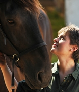 Discover Your Vision™ - with Equine Inspiration