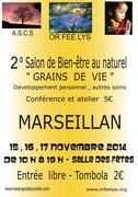 """salon de bien être au naturel """"grains de vie"""" 15-16-17 novembre 2014"""