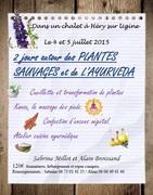 plantes sauvages et ayurveda en juillet