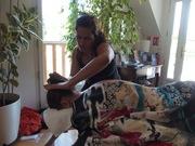 Formation Massage Heartwork Lomi Lomi à 1h de Paris