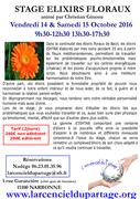 stage elixirs floraux