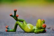 Gratuit: Yoga du rire + techniques corporelles douces pour débutants