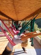 Stage Yoga swing/aérien en Andalousie 29 avr-5 mai 2017