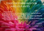Stage de communication avec les plantes
