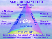 stage de kinésiologie touch for health niveau 2