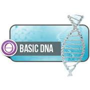 Apprendre à changer ses programmes - le ThetaHealing ADN Base