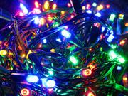 Area Holiday Lights