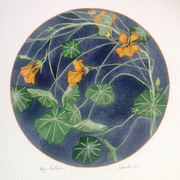 Painting Nature: Botanical Watercolors by Thayer Tomlinson