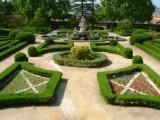 ACTIVIDADES: Visitas guiadas ao Jardim Botânico da Ajuda