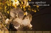 EXPOSIÇÕES: Inaugurações Simultâneas Miguel Bombarda