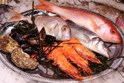 GASTRONOMIA: Peixe e marisco do dia (ao jantar)