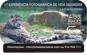 AR LIVRE: I Experiência Fotográfica de Vida Selvagem €125