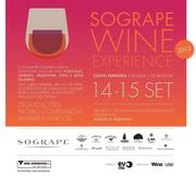 FESTIVAIS: Sogrape Wine Experience