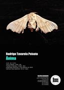 EXPOSIÇÕES: Ânima, de Rodrigo Tavarela Peixoto