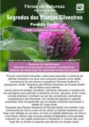 AR LIVRE: Segredos das Plantas Silvestres da Peneda Gerês - Férias de natureza