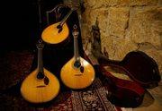 MÚSICA: Gala de Natal das Famílias Fadistas