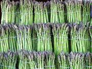 Asparagus and Flower Heritage Festival - Cancelled