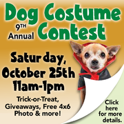 9th Annual Dog Costume Contest