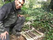 Making bug habitats at Railway Fields