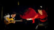 Indigo World: Fiesta Flamenca