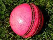 Childrens Cricket Camp: Tuesday 30 May - Friday 2 June