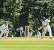 Highgate Cricket Club