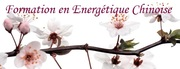 Formation l'Energétique Chinoise : Université d'été