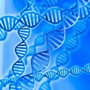 Formations ThetaHealing ADN2 Base et Avancé
