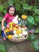 garden haul