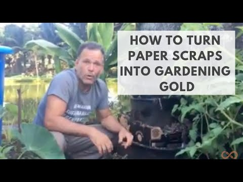 How to Turn Paper Scraps & Cardboard into Gardening Gold: Modern Alchemy Using Earth