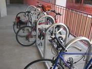 Bike Racks Northeastern