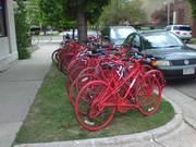 Red Bike Lineup
