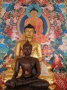 three buddha's