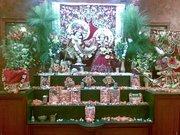 God Krishna and Radha ji
