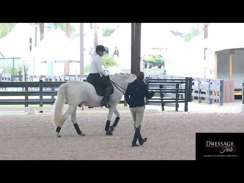 Robert Dover: Riding Your Horse Honestly On The Aids