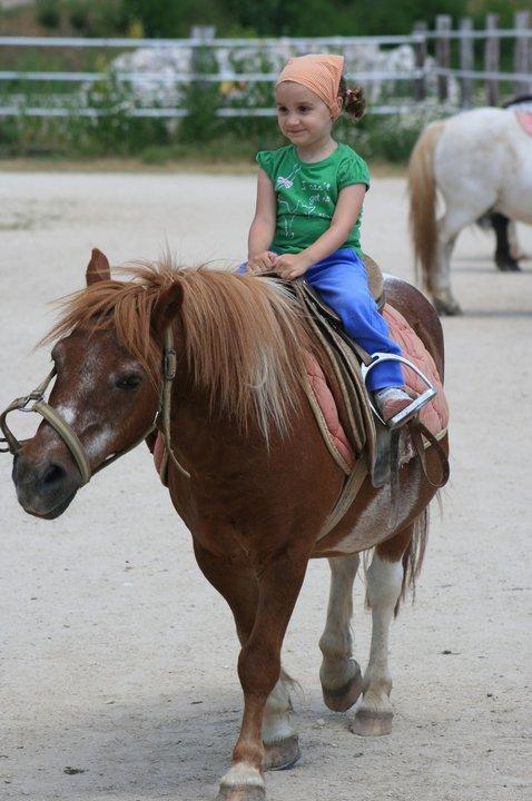 alice a cavallo2011