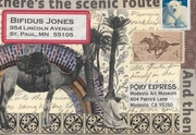 Pony Express Exhibit--Modesto Art Museum