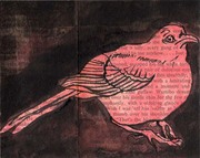 joseph conrad's bird