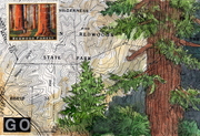 carroll's topo map painting552